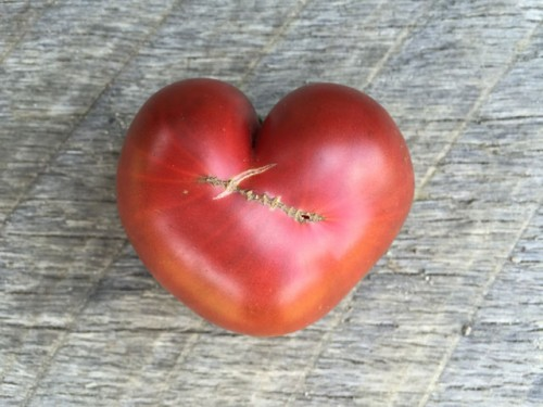 Heart-shaped tomato