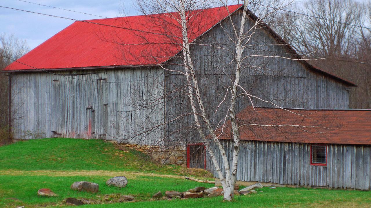 Sanaview Farm